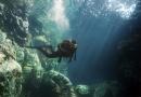 Undervandsjægere vil have jagttegn