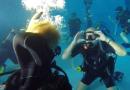 Dykkerklub uddanner gymnasieelever