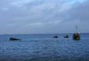 København har fået ny dykkerattraktion