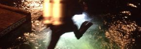 Divers Night 2014