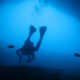 Program netop offentliggjort til dansk dykker-konference